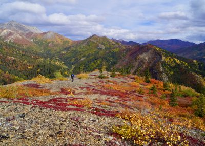 Indian Summer in der Alaska Range
